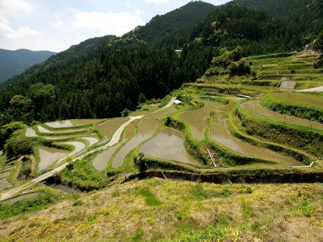 訪れてみて驚いた、四国の棚田と段畑