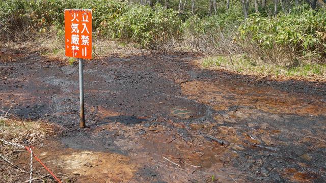 この油田、岡田さんの所有地の近くかもしれない。