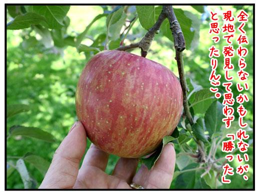 青森のりんご愛とバナナ愛