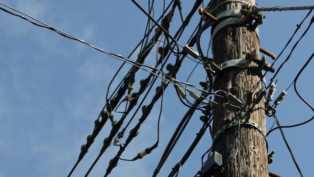 神奈川県には木の電柱が多いらしい